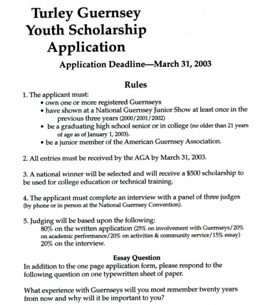 Scholarship essay format heading