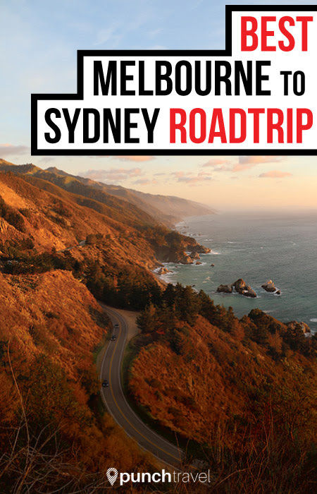 Unforgettable Melbourne to Sydney Coastal Drive Itinerary - Punch Travel
