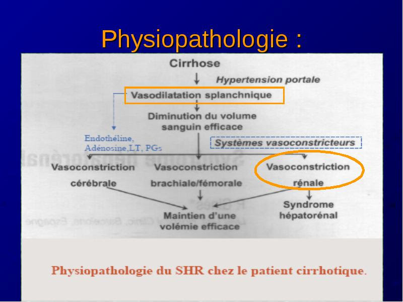 Hypertency: Hypertension Portale Physiopathologie