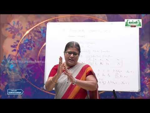 12th Business Maths Random Varible Mathematical  Part1 Q&A Kalvi TV