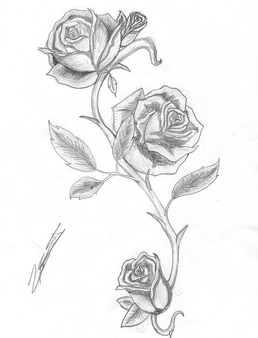 Pictures Of Rose With Thorns Tattoo Designs Kidskunstinfo