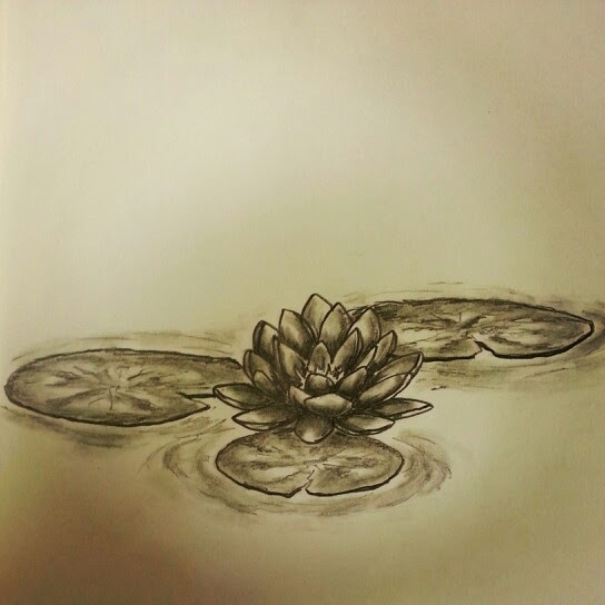Water Lily Flower Tattoo Flowers Healthy