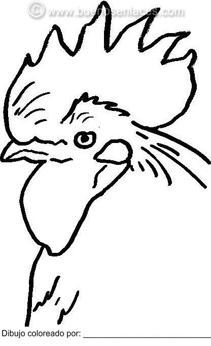 Gallos Dibujos Para Pintar Y Colorear Gallos