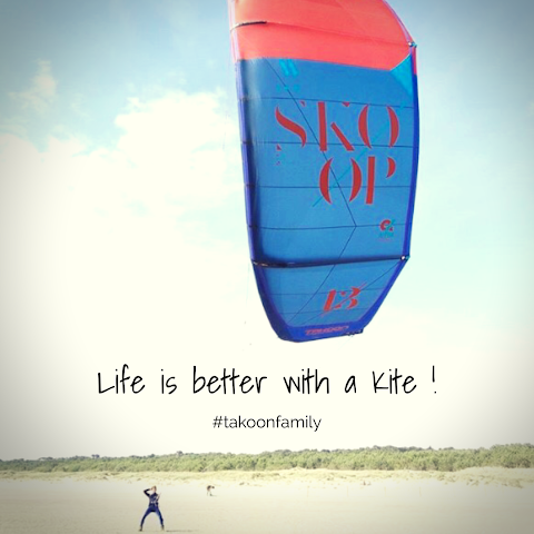 Life Is Like A Kite Quotes