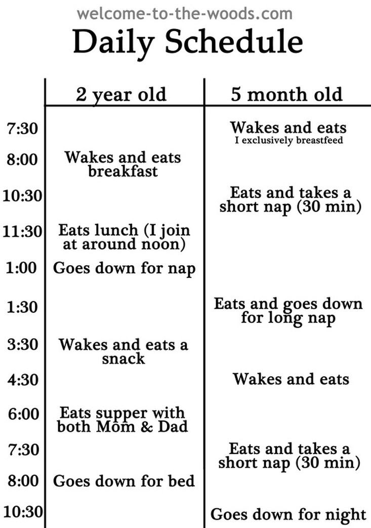 Daily schedule log. Seems more complicated than it needs to be but ...