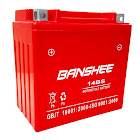 Banshee YTX14-BS Battery for Harley Davidson Motorcycle Battery with A 4 Year Warranty