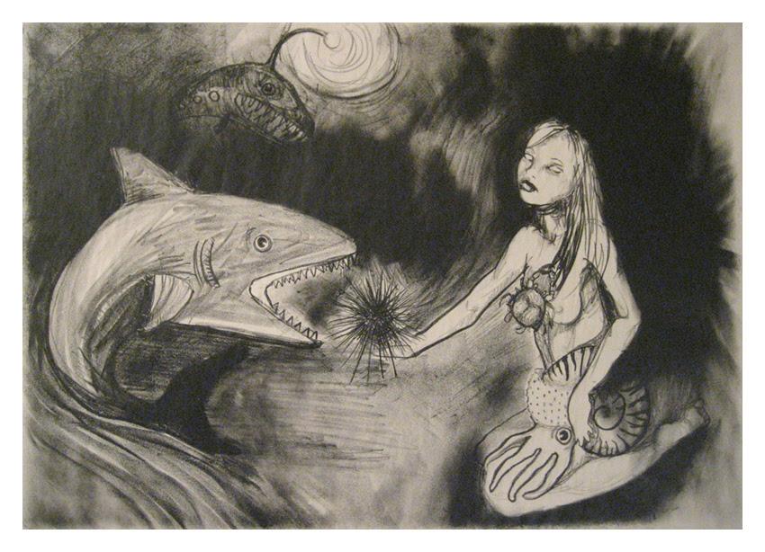 Sea Urchin and Nautilus