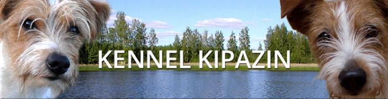 Kipazin