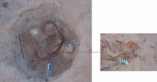 Skeletons Of Pregnant Egyptian Woman And Fetus Found By Archaeologists Suggest Death In Childbirth