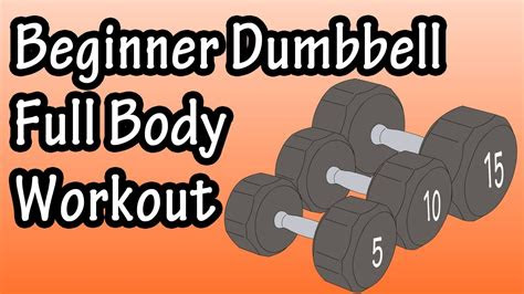 dumbbell full body workout  beginners dumbbell