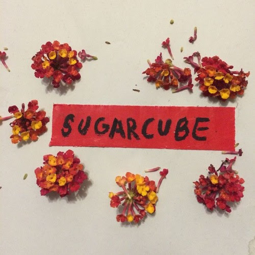 Sugarcube - Tonight by Ohh Deer Music