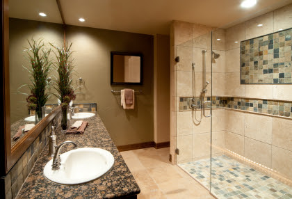 ACCESS TUBS & SHOWERS - Atlanta Stair Lifts 770.880.3405