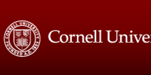 Computer & Information Sciences Update at Cornell Lunch Bunch - Naples