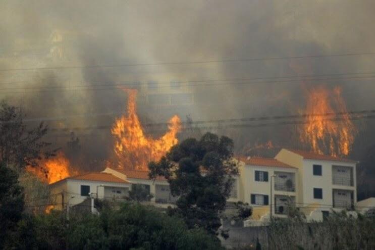 Resultado de imagem para os fogos em portugal