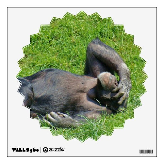 Relaxing Chimpanzee - Wall Decals
