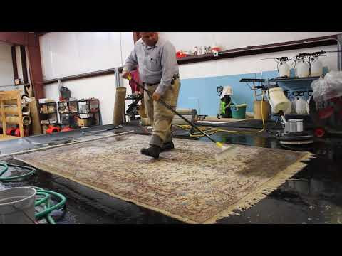 Rug Cleaning - What's Hiding In Your Rug?