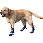 Walkin' All Weather Dog Boots - Set of 4 Small