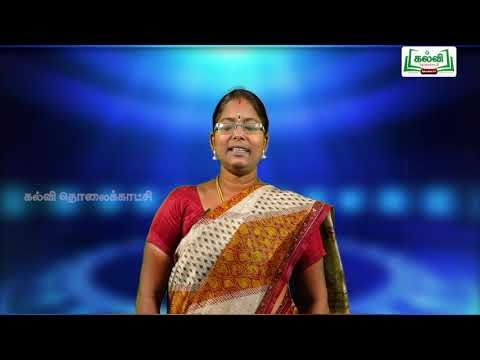 5th Tamil Bridge Course திருக்குறள், பெயர்ச்சொல், வினைச்சொல் நாள் 5, 6 Kalvi TV