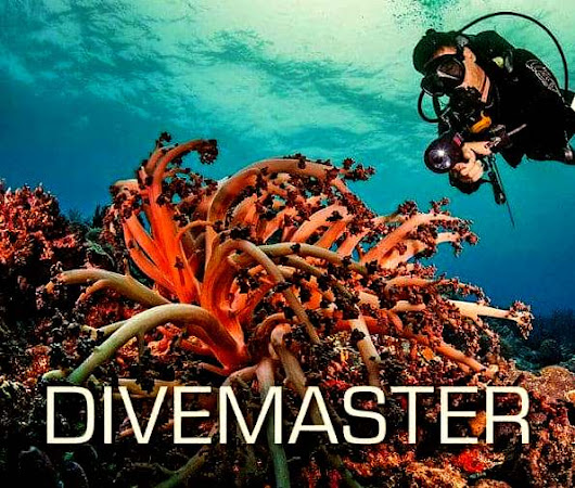 A Few Myths Related to Scuba Diving