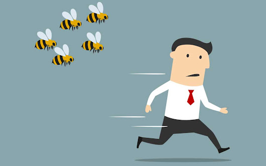 Avoid getting stung by bad developers - Odin Media
