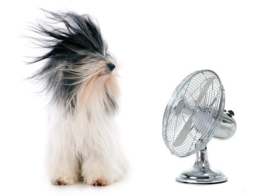 Myths for Cooling Your Home This Summer