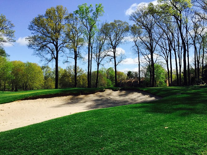 Reston Golf Management wants to build homes here. The Board of Supervisors and Reston Association will appeal last month's Board of Zoning Appeals ruling in Fairfax County Circuit Court.