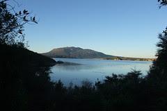 NZ 193