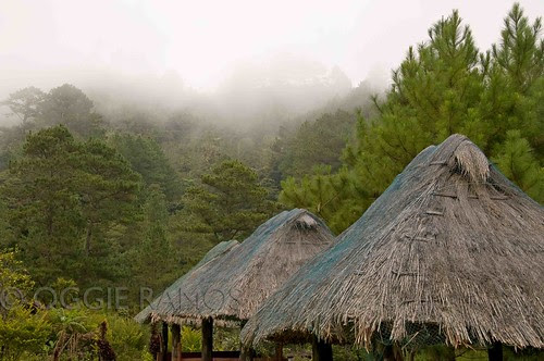 Banaue Ethnic Village Huts and Mountains