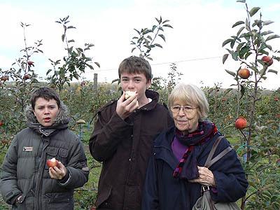 mangez des pommes.jpg