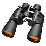 Barska Ab10169 Binocular,10X To 30X,195 Ft.,porro,black