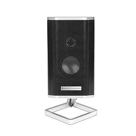 Satelit Speaker
