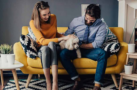 Pros and Cons of Allowing Pets in Rental Properties | SmartMove