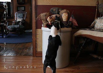 photo cat3_zps4000d237.jpg