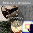 30 Days of Thanksgiving – Day 8: Senses | Bits of Beauty