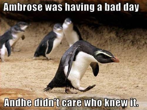 Having A Bad Day Quotes Sayings Having A Bad Day Picture Quotes