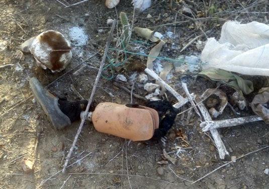 Restos mortais de pessoa ainda não identificada foram encontrados junto a uma prótese de perna