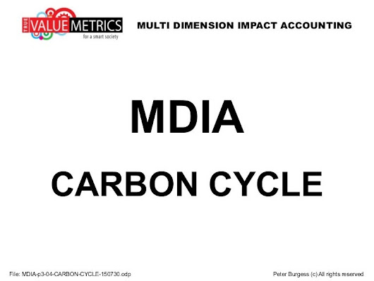 Mdia p3-04-carbon-cycle-150730