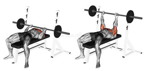 exercising close grip barbell bench press stock