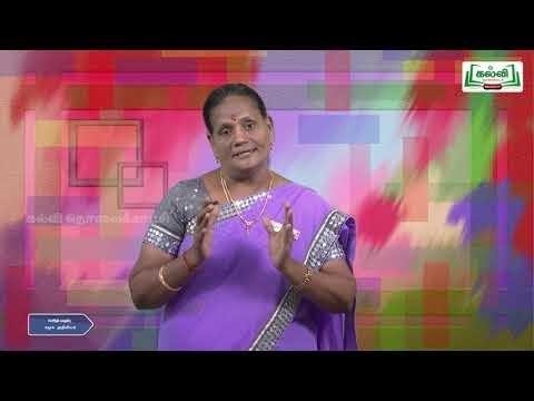 10th Social Science மொத்த உள்நாட்டு உற்பத்தி Kalvi TV