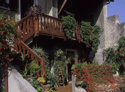 terrazaa