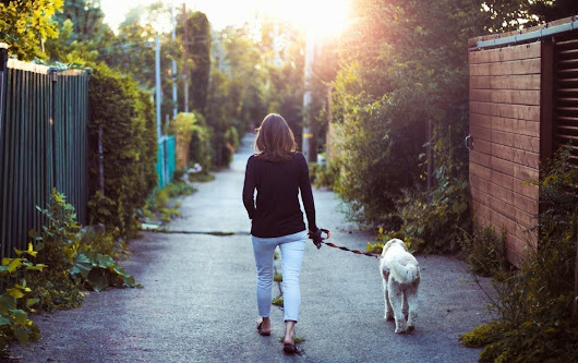 Why You Should be Walking, Science Says | MyFitnessPal