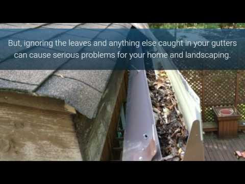 Gutter Cleaning Service St Louis