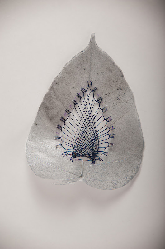 Stitched Leaves by Hillary Fayle