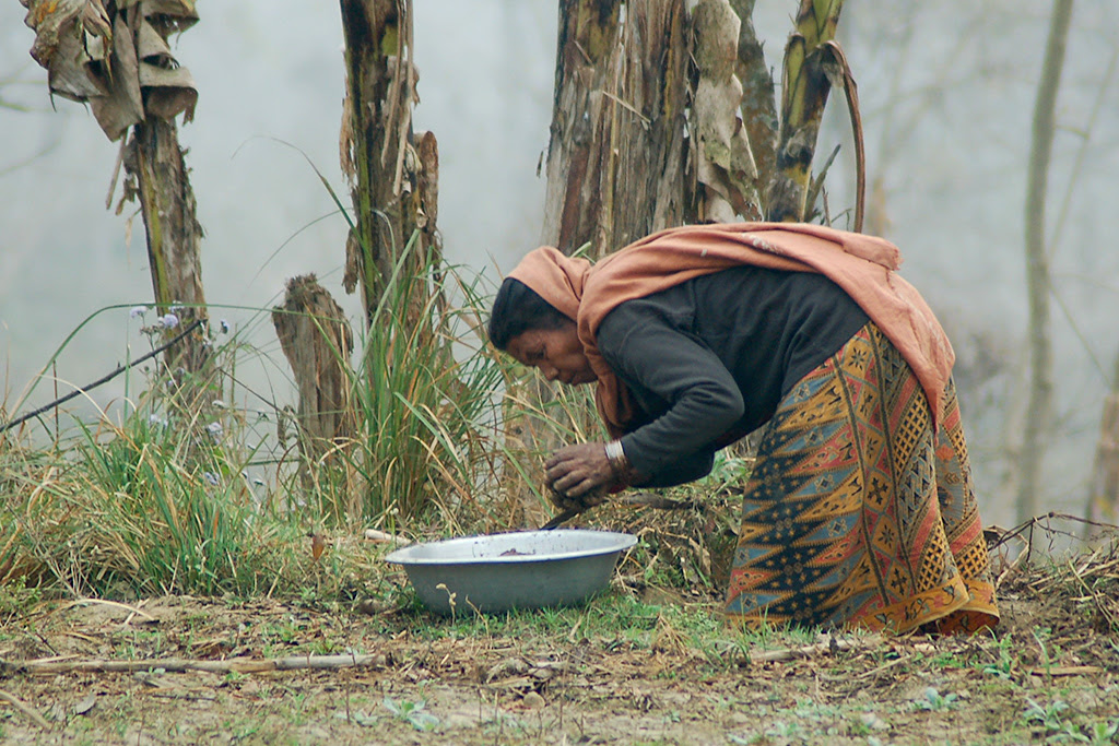Nepalese Woman by David Orgel