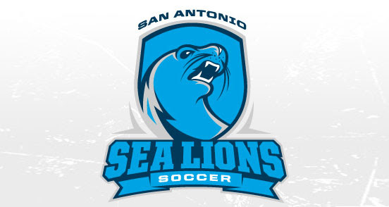 sea lions soccer l1 30 Creative Ribbon Logo Designs