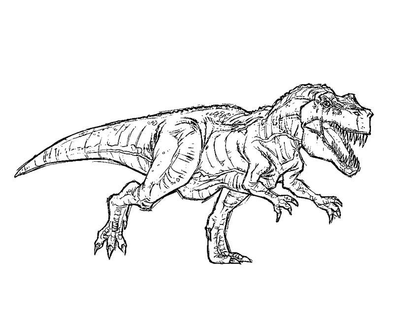 Jurassic Park Coloring Pages T Rex At Getcoloringscom Free