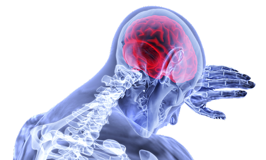 Traumatic Brain Injury | Car Accident Lawyer Indianapolis, Indiana