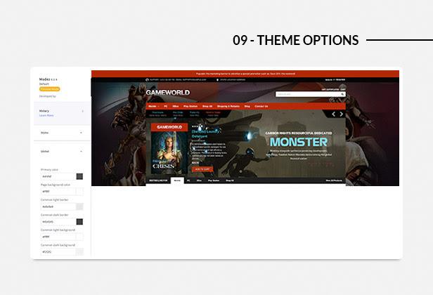 Theme Options / Theme Editor