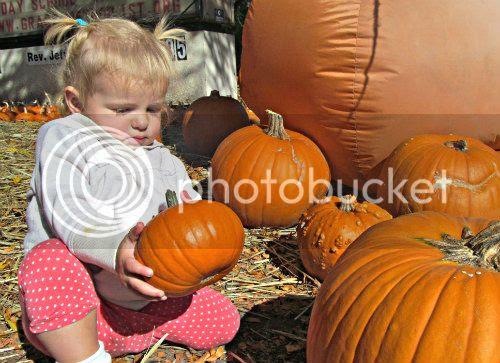 Oct2012 Pumpkin Patch