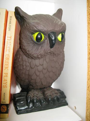 Book Barn owl
